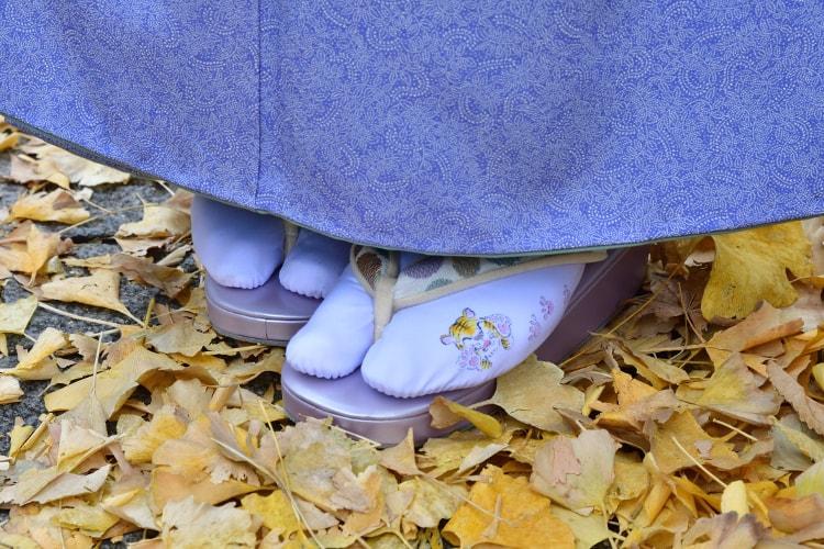 加納知之先生に描いてもらった足袋